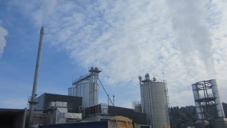 Biomasse-Heizkraftwerk Wunsiedel Energieberatung Wunsiedel - Nutzung von Biomasse - Biomasseanlagen otimieren