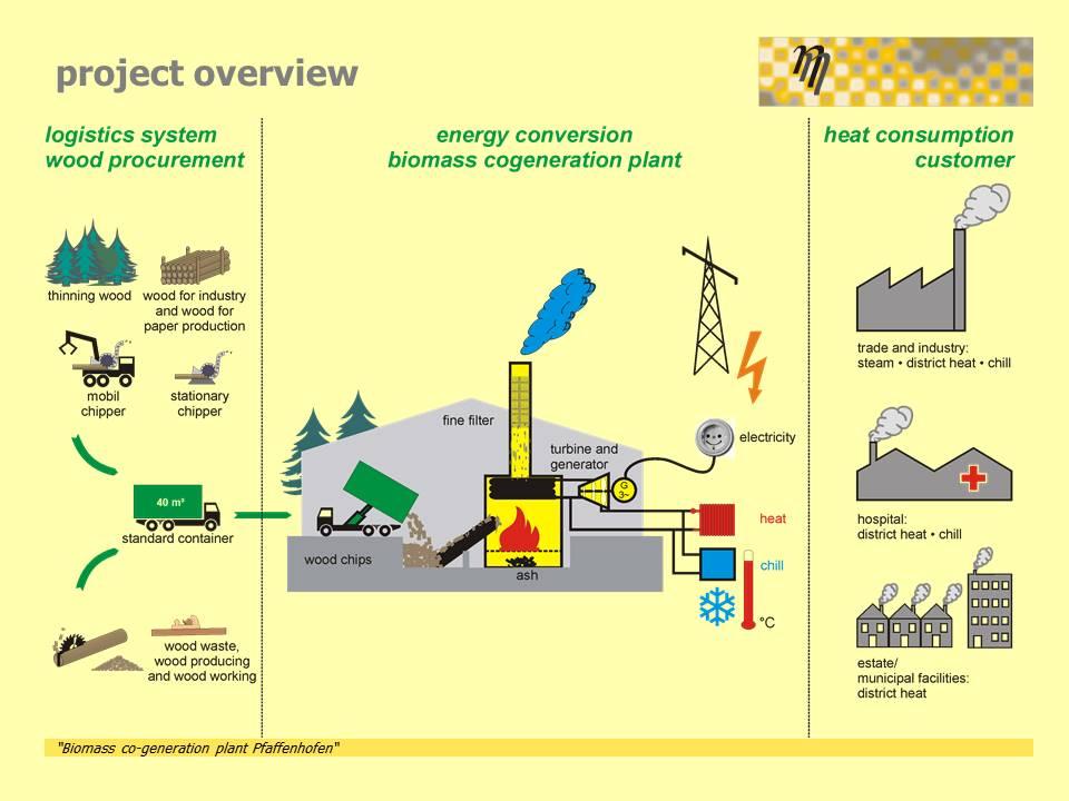 biomass co-generation plant