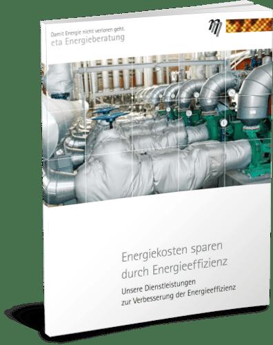 Deckblatt Sparen durch Energieeffizienz- eta Energieberatung