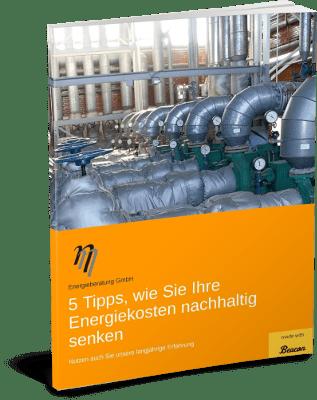 Broschüre Energiekosten nachhaltig senken - eta Energieberatung