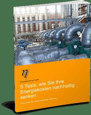 Deckblatt Ratgeber Energiekosten nachhaltig senken - eta Energieberatung