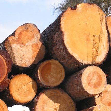 Wärmegestehungskosten Biomasse-Heizwerk
